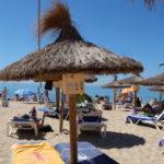 Sol och bad i Palma